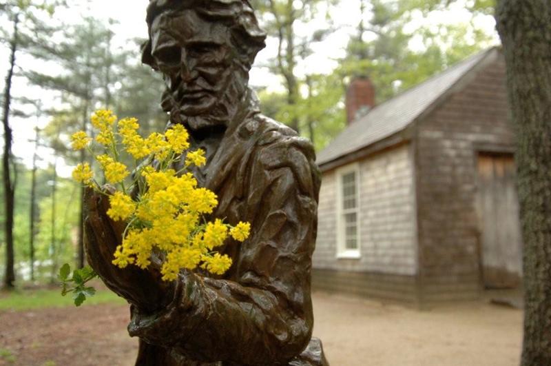 Henry-David-Thoreau2